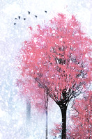 Blossoms In Winter Wall Art