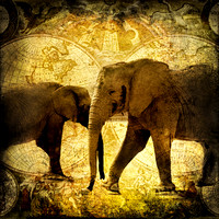 Elephants Roam The Earth Vintage Grunge