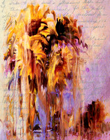 Lament Of Sunflowers